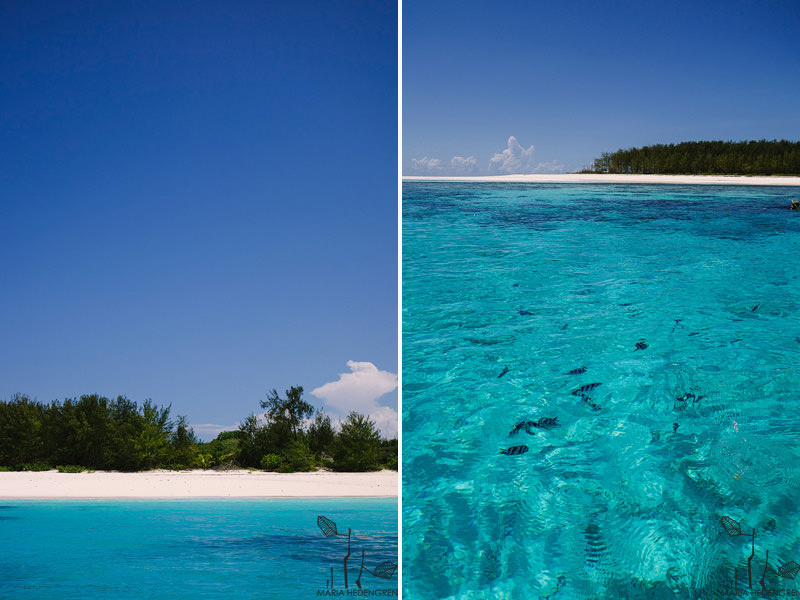 Indian Ocean Island