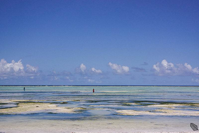 Zanzibar Beach Photography 026
