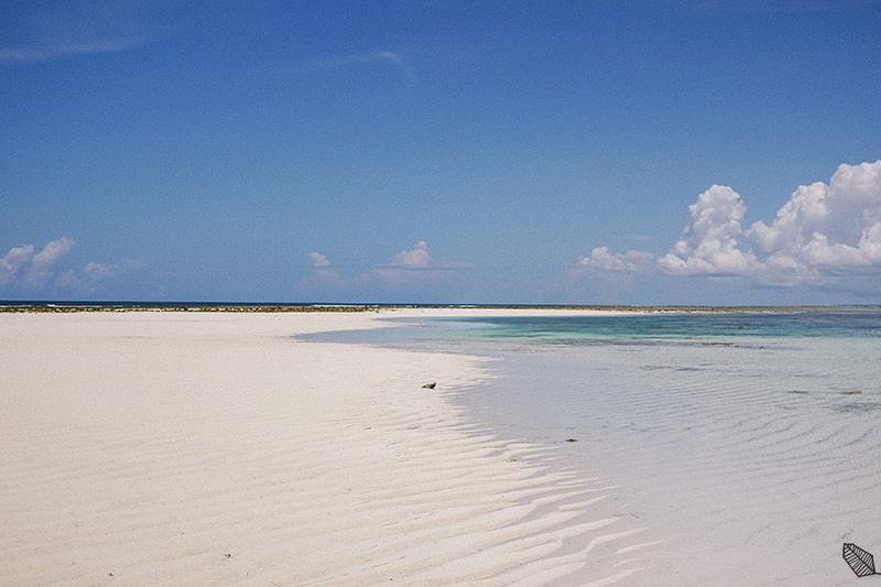 Zanzibar Honeymoon Photography
