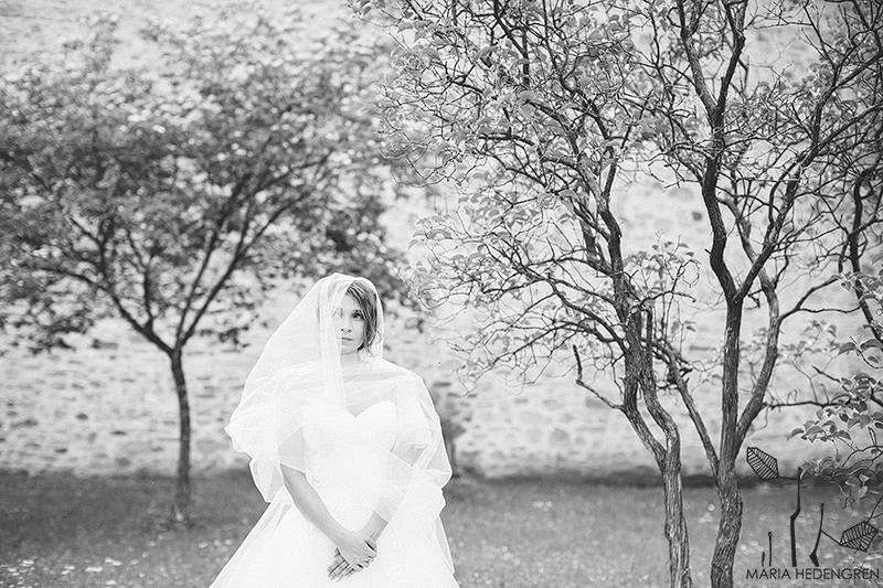 Fotograf Nunta Sucevita