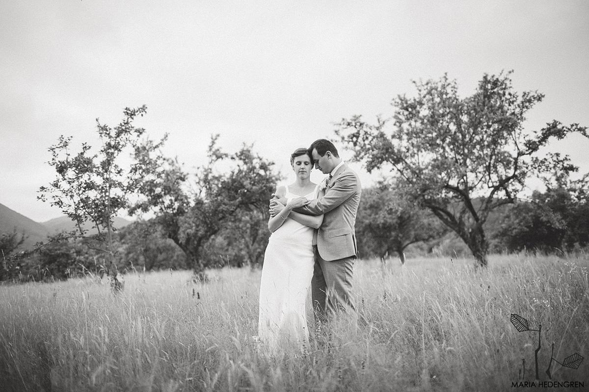fotograf nunta sibiel