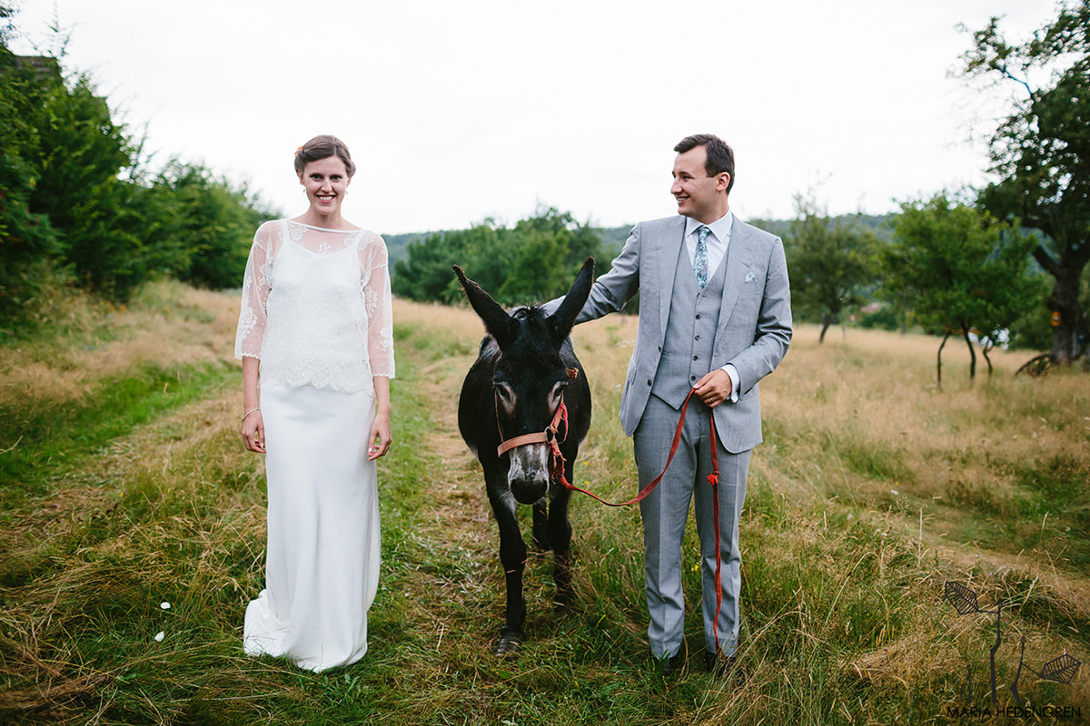 wedding couple with donkey