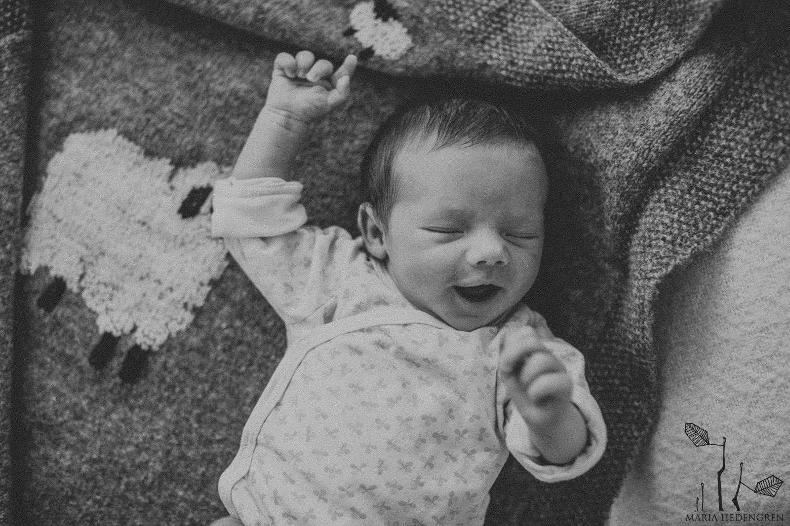 Helsinki Vauvakuvaus