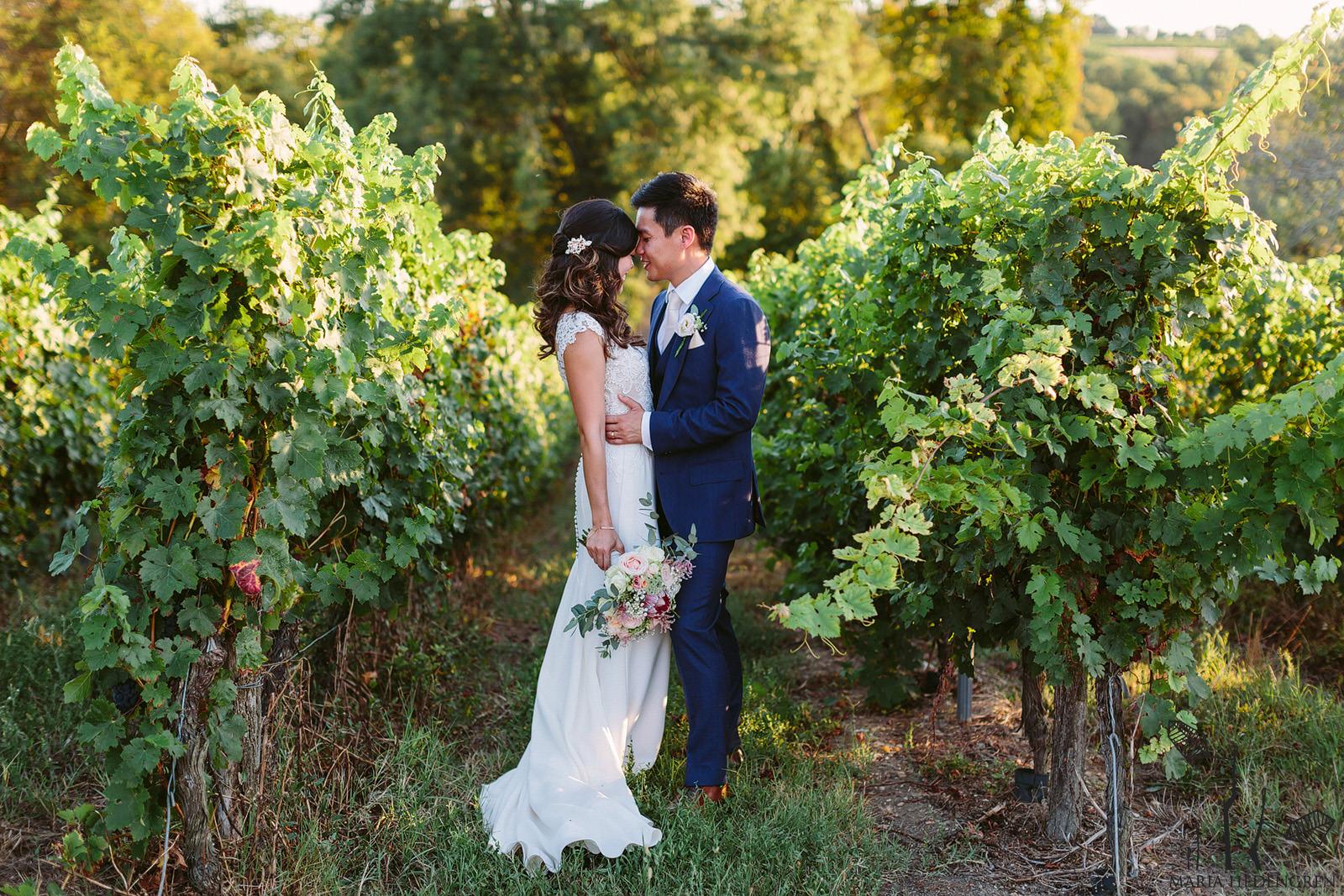 France Vineyard destination wedding