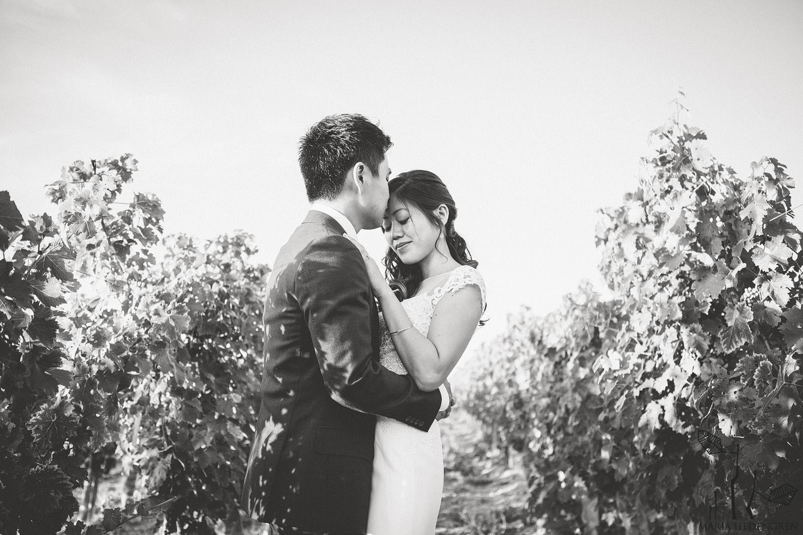wine valley wedding