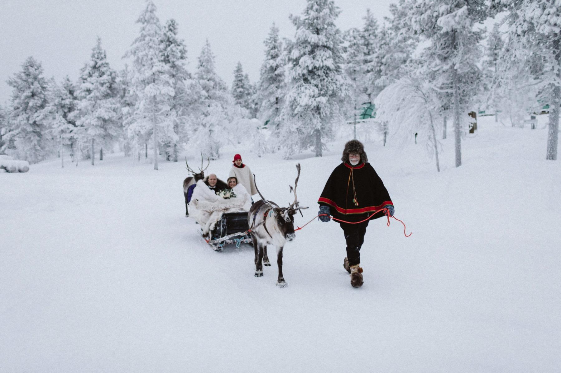 reindeer adventure Lapland