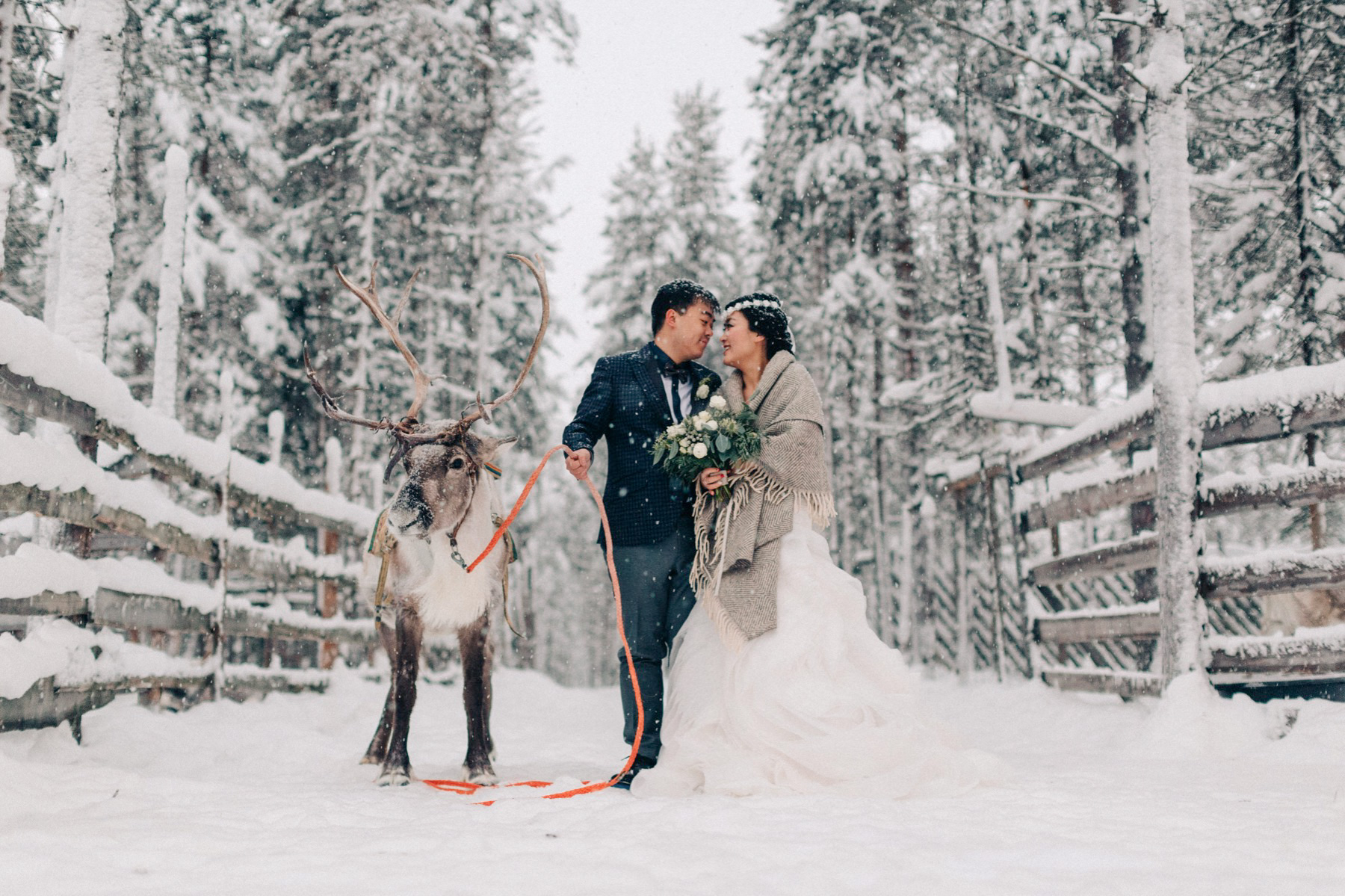 Lapland Pre Wedding Photo Session