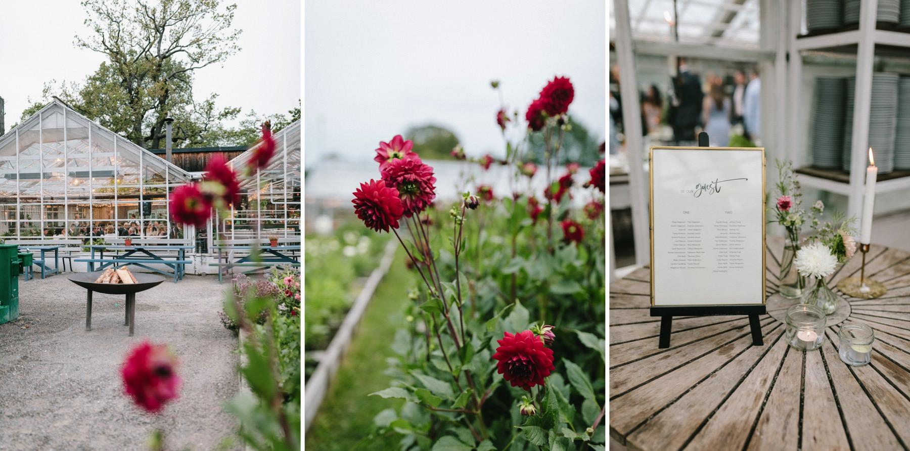 Rosendals Trädgård visning