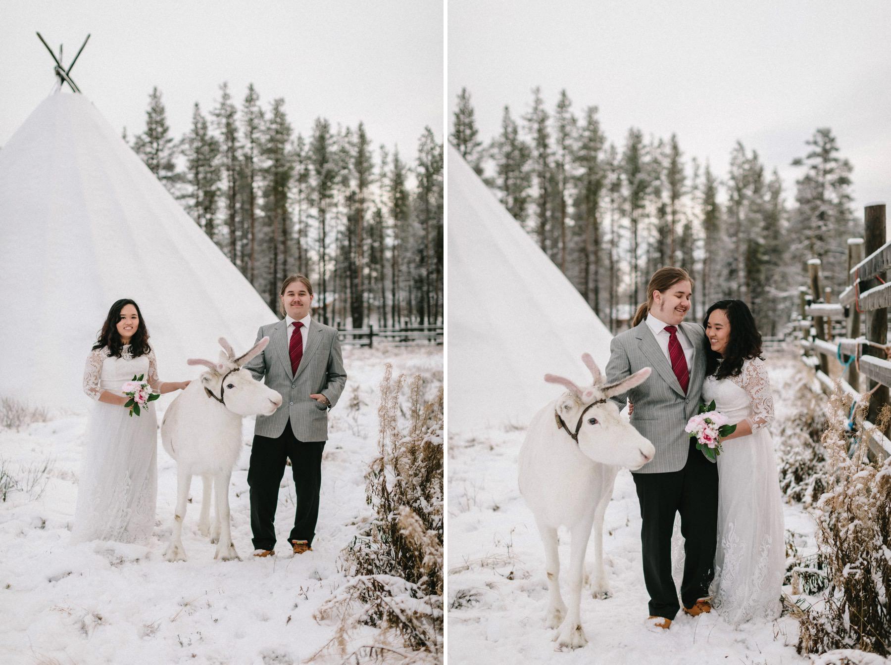 reindeer farm in Lapland prewedding
