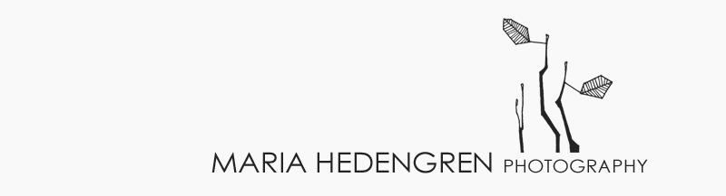 Finland Wedding Photographer | Häävalokuvaaja Helsinki logo
